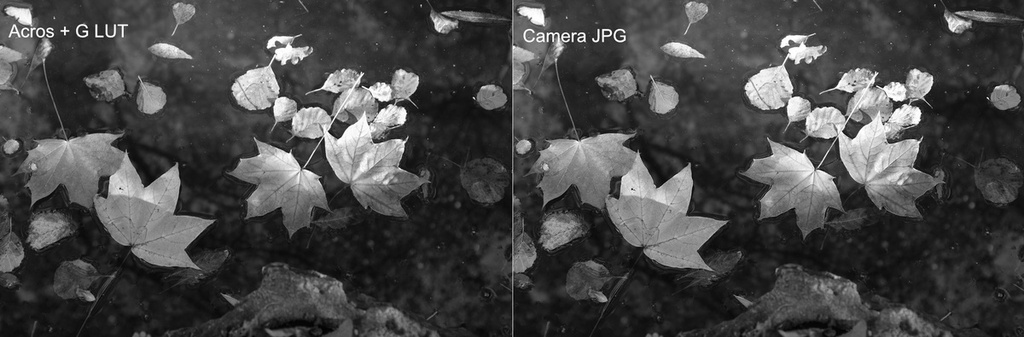 Fuji Film Simulation Comparison #3 - Acros + G.jpg